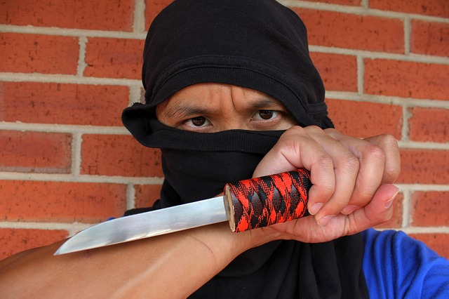 ninja photo